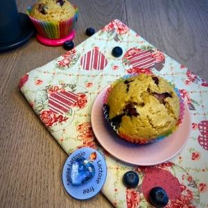 muffins ai mirtilli vegani con farina di farro